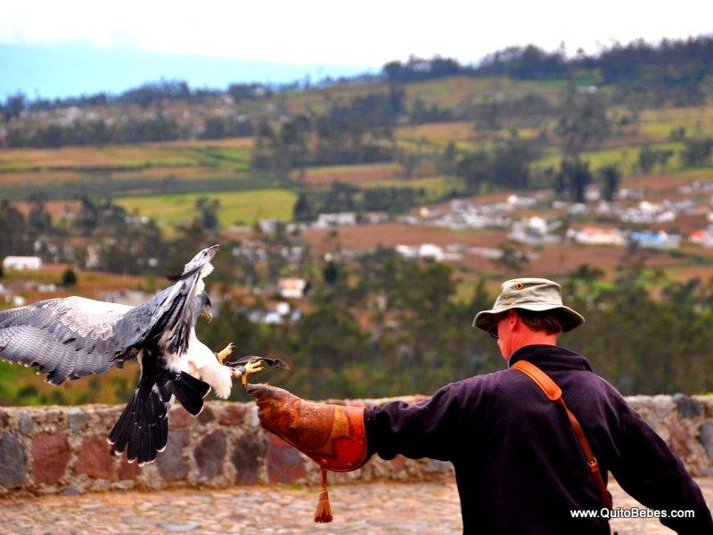 Parque-del-condor-2