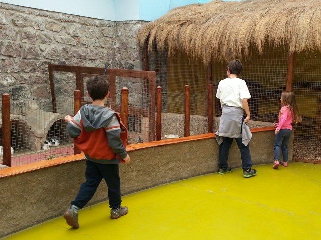 museos de quito