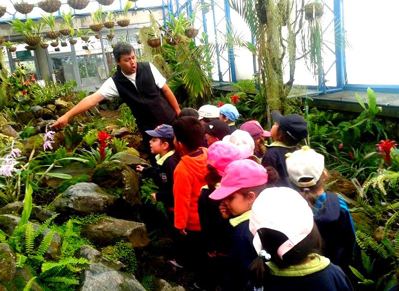 centro infantil el arca del saber